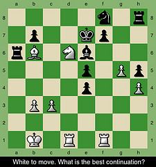 Teaching chess and life essay